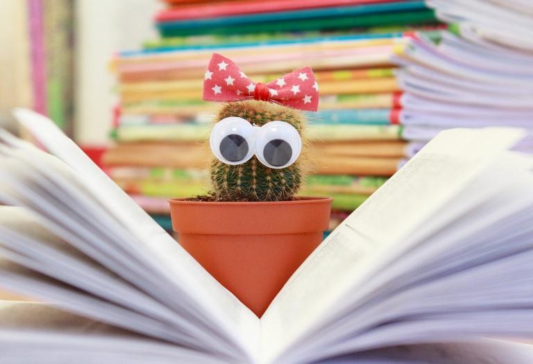 čitanje knjiga slika