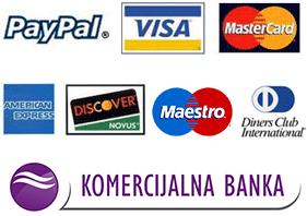 paypal visa logo