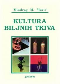 Kultura biljnih tkiva