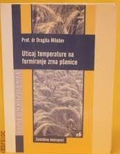 Uticaj temperature na formiranje zrna pšenice