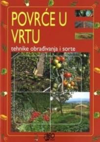 Povrće u vrtu - tehnike obrađivanja i sorte