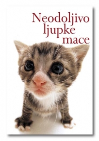 Neodoljivo ljupke mace