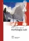 Morfologija zubi