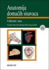 Anatomija domaćih sisavaca