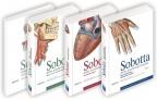 SOBOTTA - Atlas anatomije čoveka