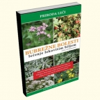 Bubrežne bolesti – lečenje lekovitim biljem