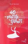 Četrdeset pravila ljubavi, roman o Rumiju
