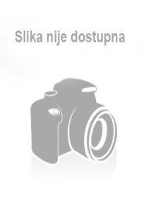Project 4 Fourth Edition, radna sveska + CD