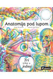 Anatomija pod lupom
