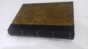 Letopis Matice srpske 1901, sveske 205-210, odlicno ocuvano, veci format, tvrd povez