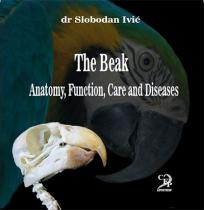 The Beak - Anatomy, Function, Care and Diseases