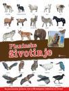 Panorama: Planinske životinje