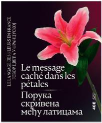 Le message cache dans les petales / Poruka skrivena među laticama